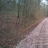 New track looking towards Eleanor's Loop