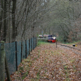 Mince Pie Specials 2011 - Trains Passing